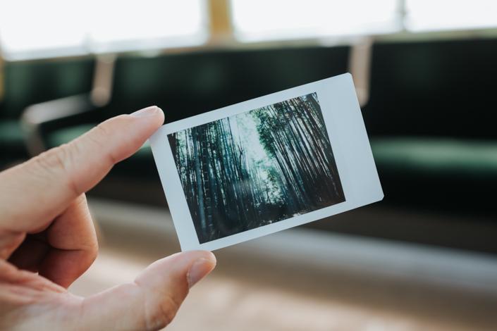 fujifilm instax arashiyama bamboo forest